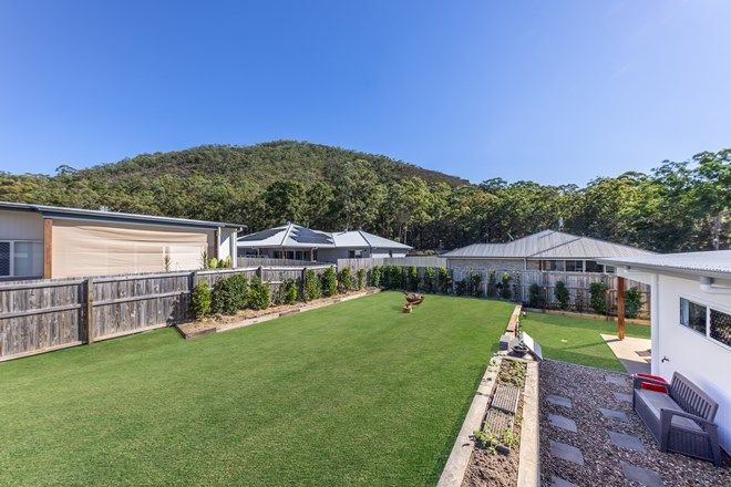 Picture of 16 Karumba Place, BEERWAH QLD 4519