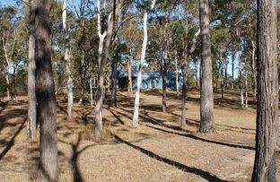 Picture of Lot 98 Mollenhagen Road, Winfield QLD 4670