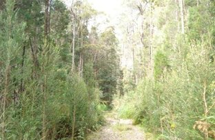 Picture of Lot 2 Trafford Street, Strahan TAS 7468