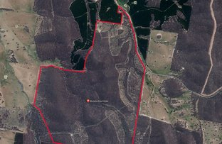 Picture of 1446 Four Mile Lane, Little Billabong NSW 2644