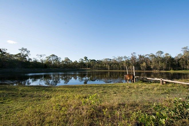 Picture of 30 Mattons Road, AVONDALE QLD 4670