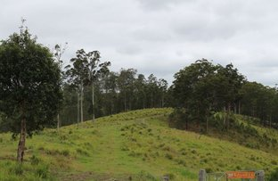 Picture of Lot 65 DP 754411, Doyles River NSW 2446
