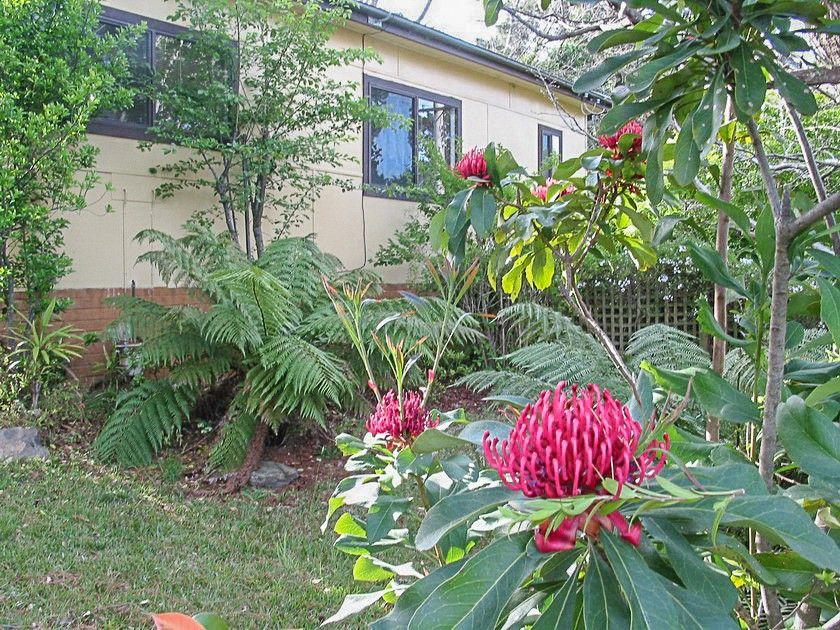 6 Queens Oak Street, Lawson NSW 2783, Image 2