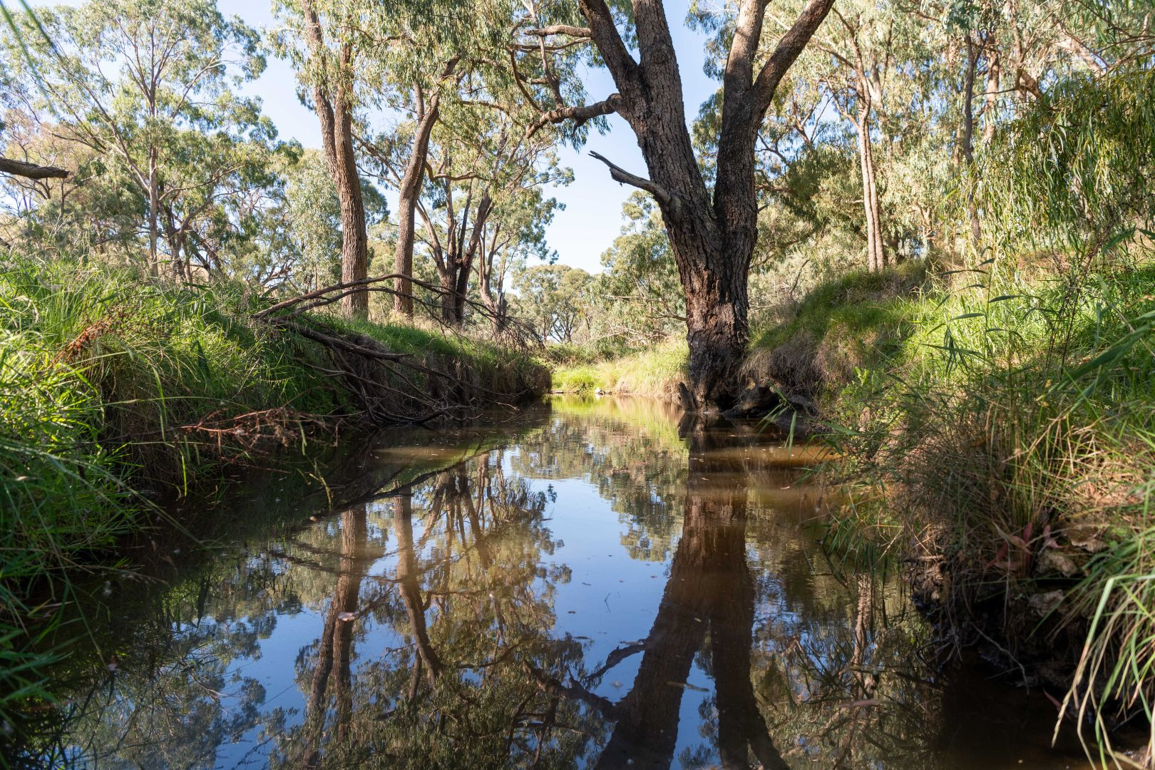 3 Taylors Flat Road, Taylors Flat NSW 2586, Image 1