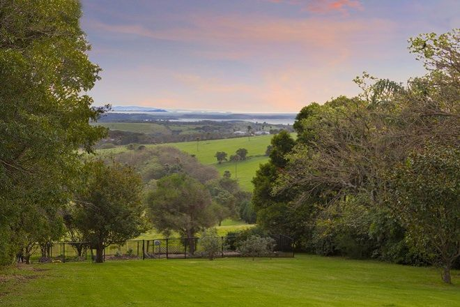 Picture of 254 Saddleback Mountain Rd, KIAMA NSW 2533
