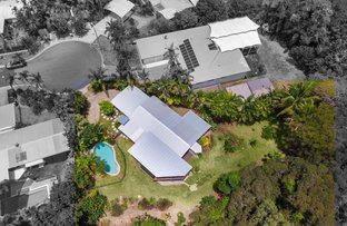 Picture of 10 Talpa Cl, Palm Cove QLD 4879