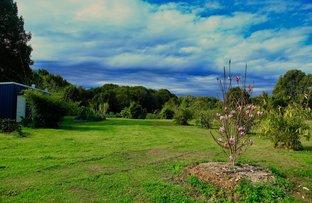 Picture of 1 Upsalls Creek Rd, Upsalls Creek NSW 2439