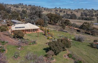 Picture of 81 Bonnie Springs Road, Jindera NSW 2642