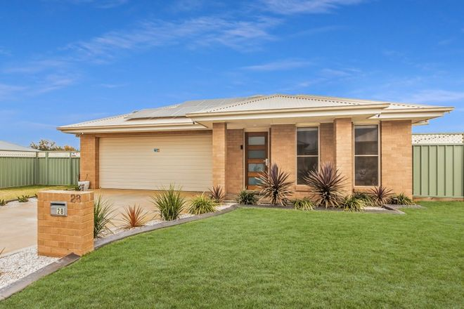Picture of 28 Ivy Court, DUBBO NSW 2830