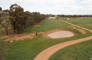Picture of 542 Cookamidgera Road, Parkes NSW 2870