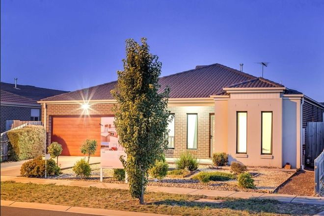 Picture of 14 Red Robin Road, TRUGANINA VIC 3029