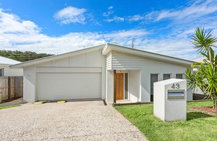 Picture of 43 Parksedge Street, Upper Kedron QLD 4055