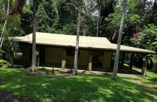 Picture of 41 Cadagi Dr, Kuranda QLD 4881