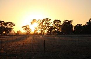 Picture of Ellerslie Estate, Temora NSW 2666