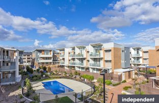 Picture of 149/116 Easty STREET, Phillip ACT 2606