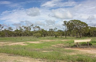 Picture of Lot 101 Macadamia Street, Mareeba QLD 4880