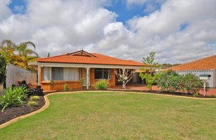 Picture of 3 Sapium Way, Woodvale WA 6026