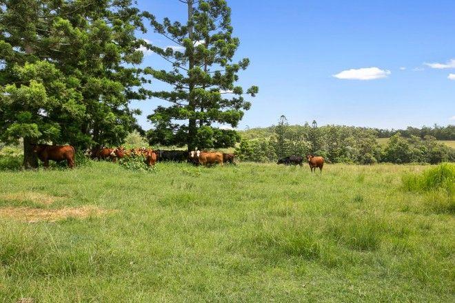 Picture of 292 Melawondi Road, MELAWONDI QLD 4570
