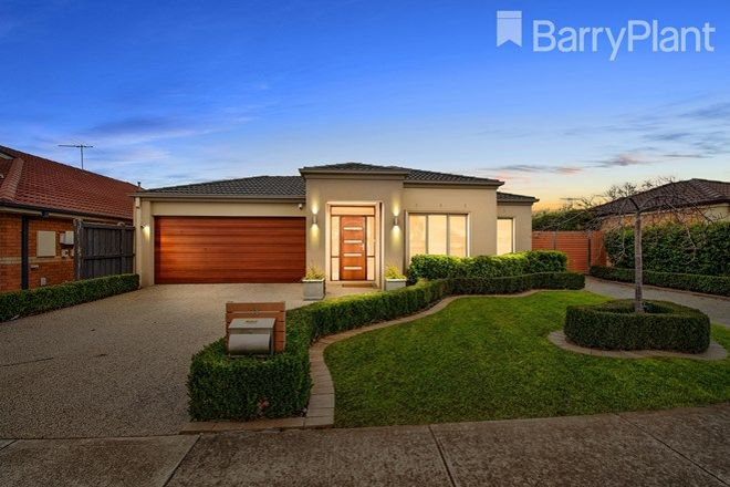 Picture of 11 Solander Grove, TARNEIT VIC 3029