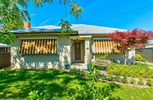 294 Olive Street, Albury NSW 2640