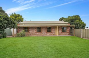 Picture of 56 Ashbourne Road, Strathalbyn SA 5255