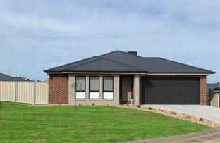 Picture of 38 Stockman Circuit, Thurgoona NSW 2640