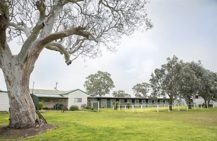 Picture of 3029A Glenelg Highway, Coleraine VIC 3315