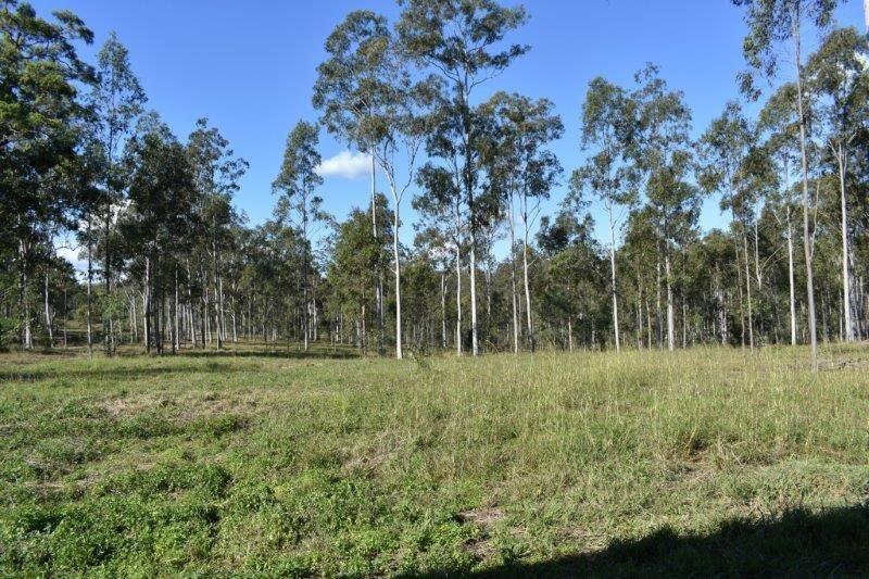 Lot 1 Maryborough Biggenden Rd, Brooweena QLD 4620, Image 2