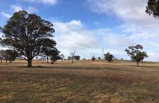 Picture of 138 Cultowa Lane, Canowindra NSW 2804