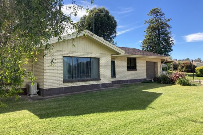 Picture of 10033 RIDDOCH HIGHWAY, WILD DOG VALLEY SA 5271