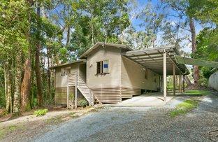 5 Wattle Grove, Springbrook QLD 4213