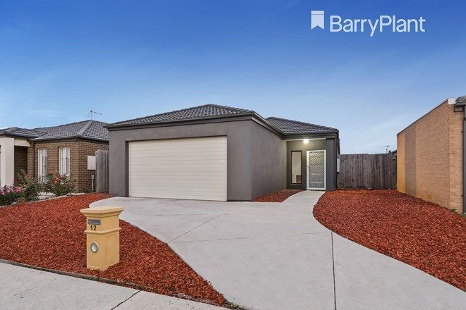 Picture of 12 Surveyor Street, WYNDHAM VALE VIC 3024