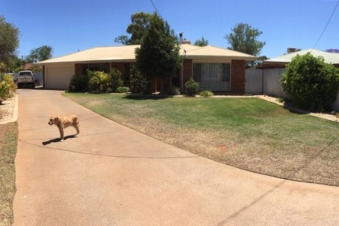 Picture of 7 Eccles Place, HANNANS WA 6430