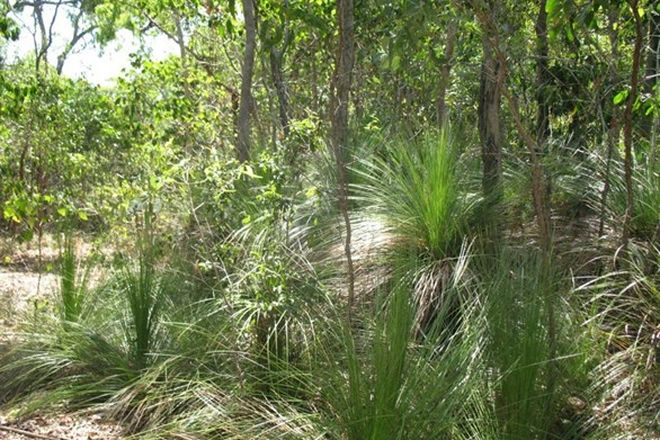 Picture of Lot 2 Allan Road, CONWAY BEACH QLD 4800
