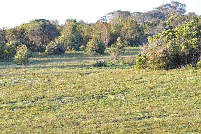 Picture of Lot 6 Douglas Dawson Track, ROBE SA 5276