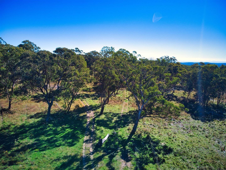 L1- 100 ha/3053 Nullo Mountain Road Nullo Mountain, Rylstone NSW 2849, Image 2