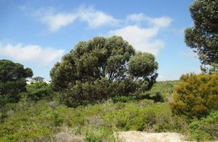 Picture of 18 Quongdong Ct, Lancelin WA 6044