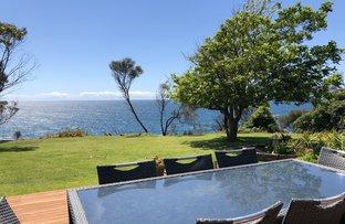 Picture of 71 Tallawang Avenue, Malua Bay NSW 2536