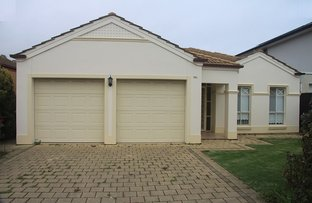 Picture of 43A Whyte Crescent, Somerton Park SA 5044