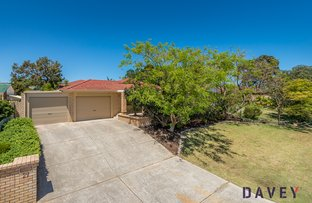 Picture of 29 Harness Street, Kingsley WA 6026