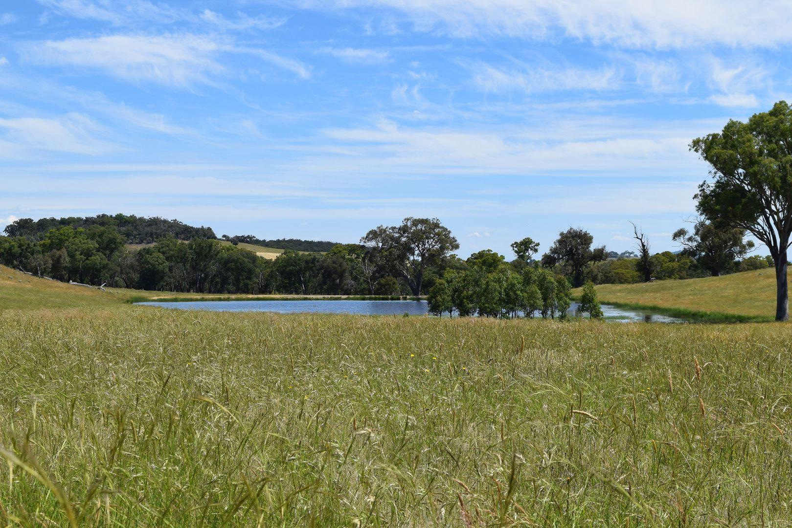 1430 Wargeila Road, Yass NSW 2582, Image 0