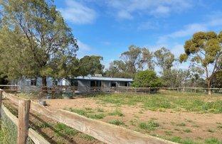 Picture of 30 Prosperity, Murray Bridge SA 5253