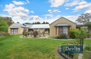 15 Balaclava Road, Beechworth VIC 3747