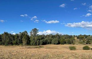 Picture of Newfarm Road, Chatsworth QLD 4570