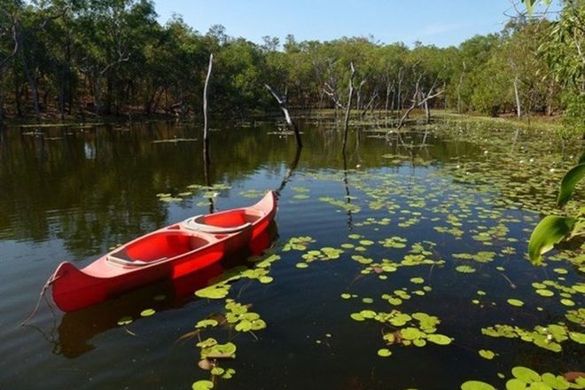 Picture of 445 Chinner Road, LAKE BENNETT NT 0822