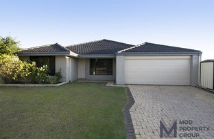 Picture of 12 Salamanca Turn, Clarkson WA 6030