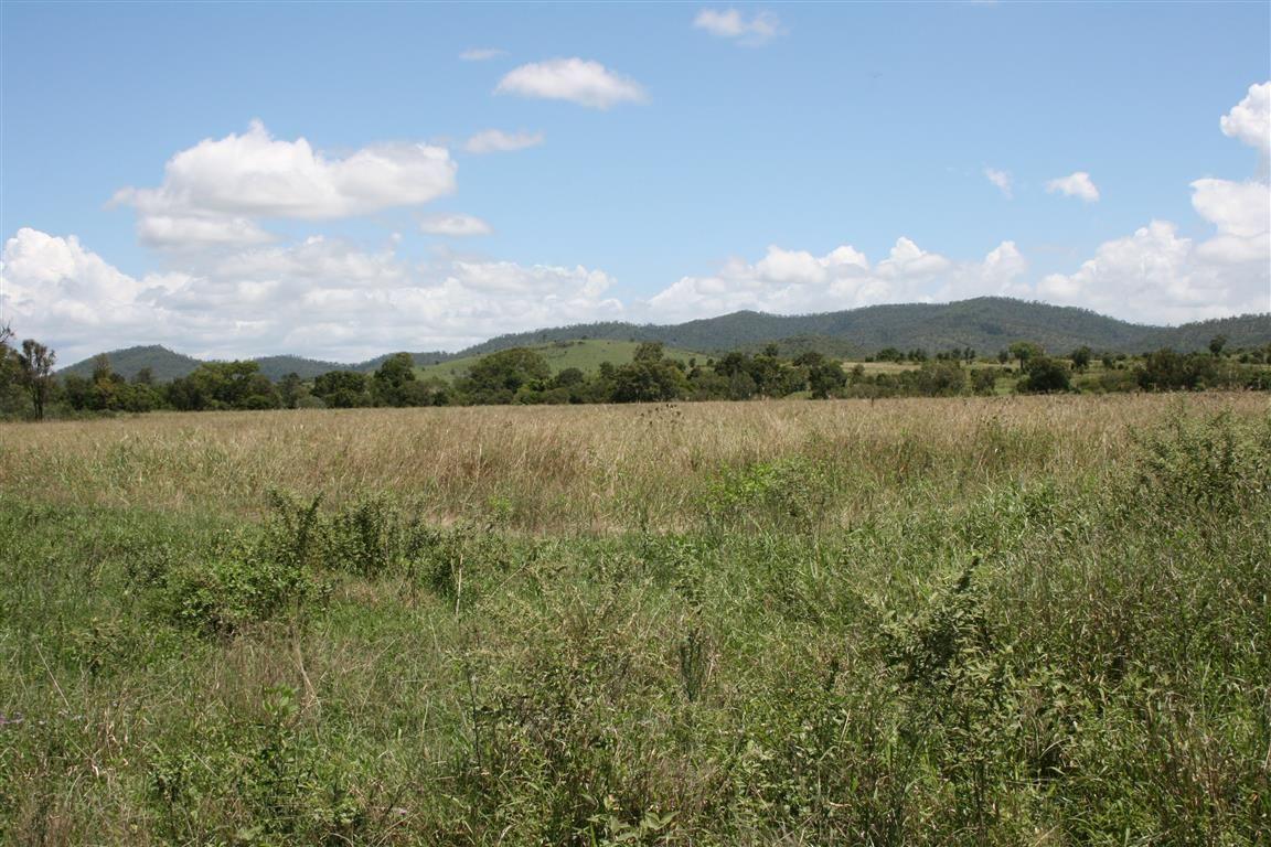 670 Hourigan Creek Road, Raglan QLD 4697, Image 1