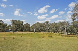 Picture of 892 Mansfield Road, Benalla VIC 3672