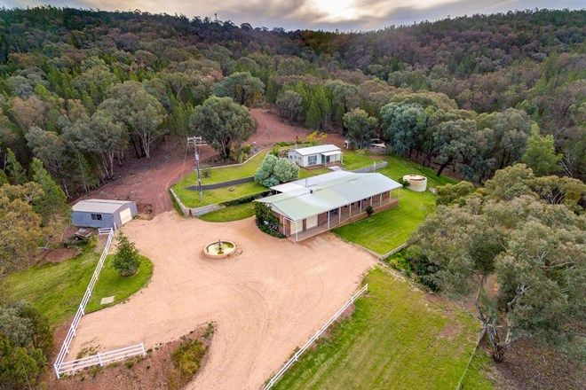Picture of 300 Packham Drive, MOLONG NSW 2866