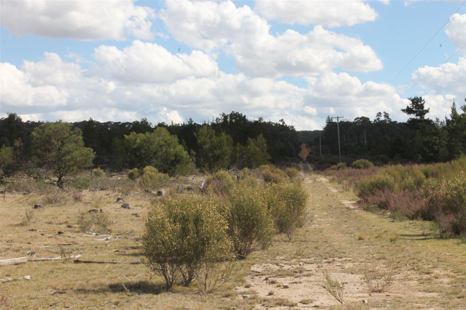 Corner Nerriga and Hobbs Creek Roads, Braidwood NSW 2622, Image 2
